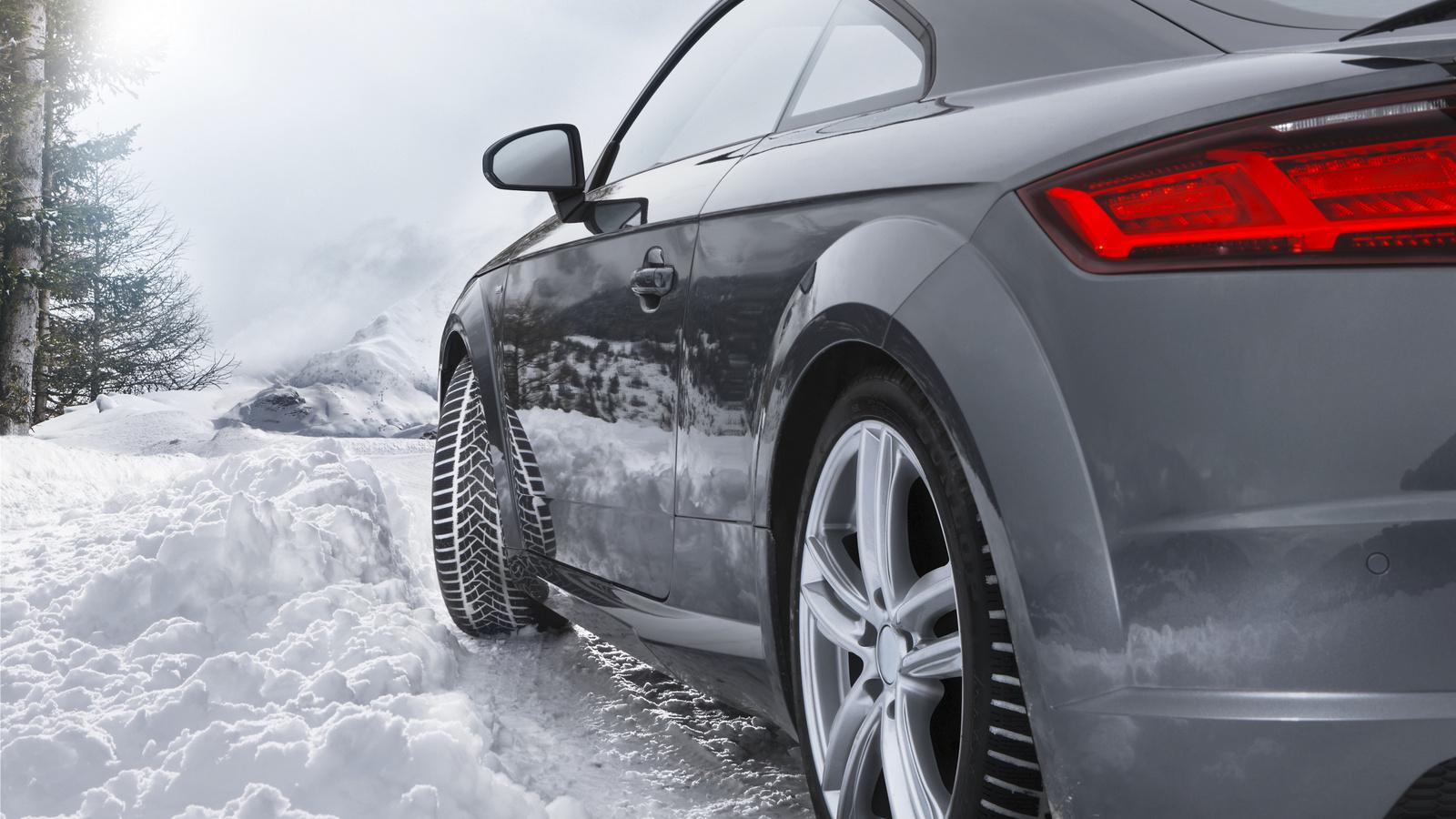 Dunlop Winter Sport 5 22545 R17 91 H Mfs Voidapl